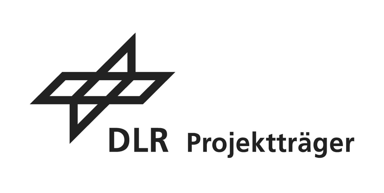 dlr-logo-transparent